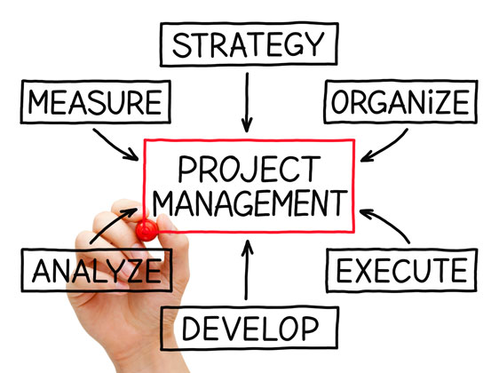 spider graph of project management